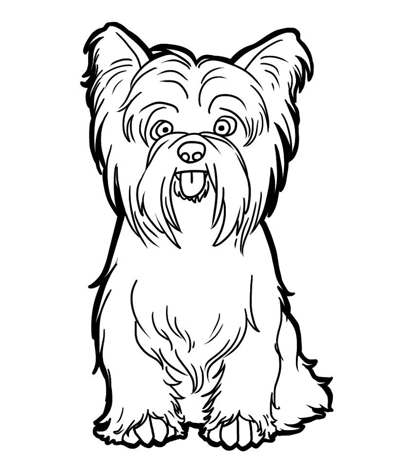 Free Yorkshire Terrier Cliparts, Download Free Clip Art.