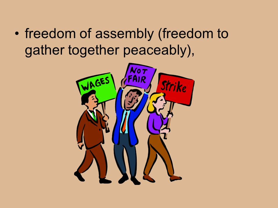 freedom of assembly (freedom.