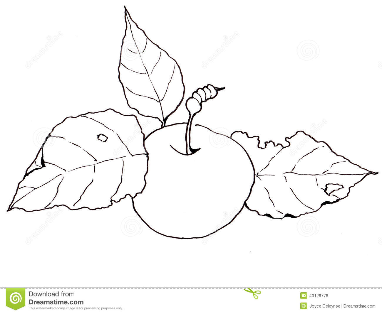 Freehand Clip Art, Drawing Of An Apple With Leaves Stock.