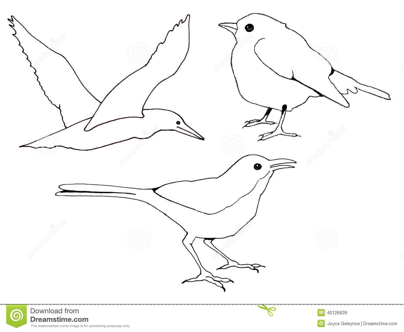 Freehand Clip Art Of Three Birds Stock Illustration.