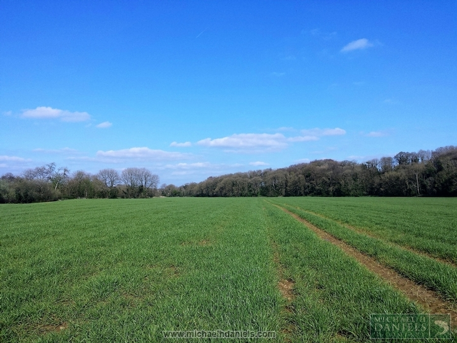 Prime Agricultural Land at Ballymagooly, Mallow, County Cork.