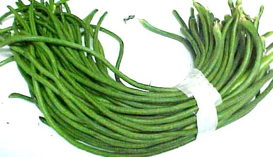Cooking Green Beans.