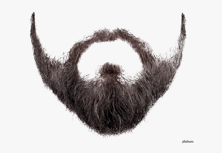 Transparent Realistic Mustache Png.