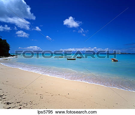 Stock Image of TROPICAL BEACH SEA AND FISHING BOATS GUADELOUPE.