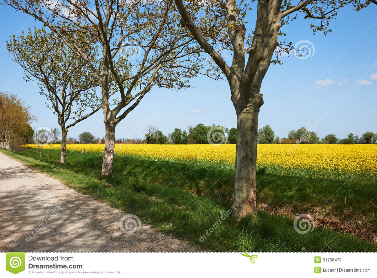 French Countryside Stock Photo.