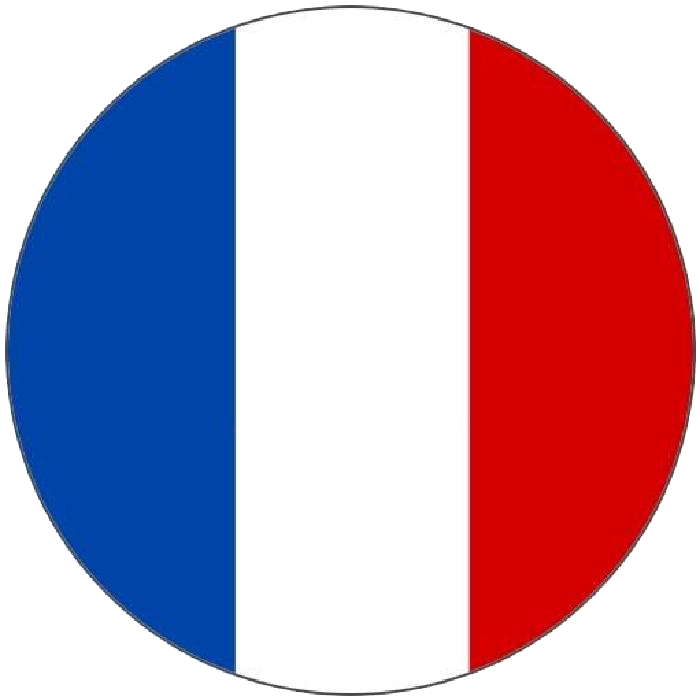 Flag of France Language French Translation.