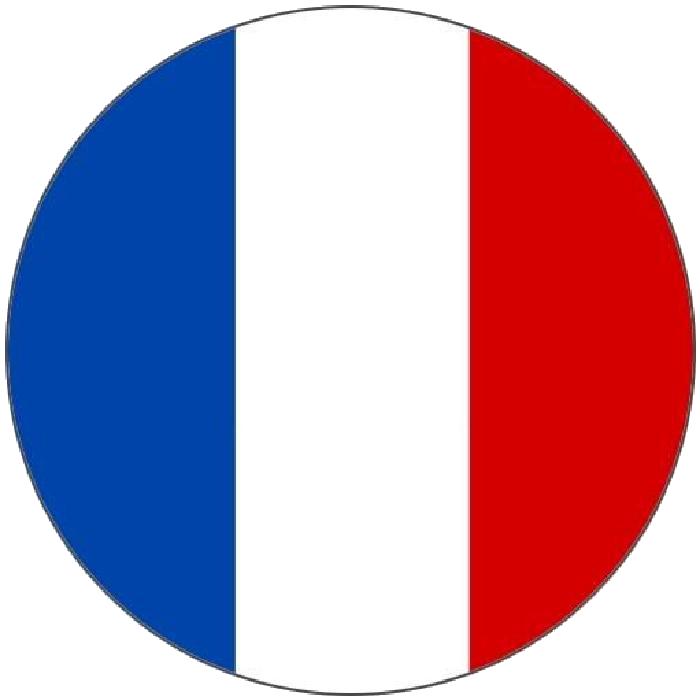 Flag of France Language French Translation.