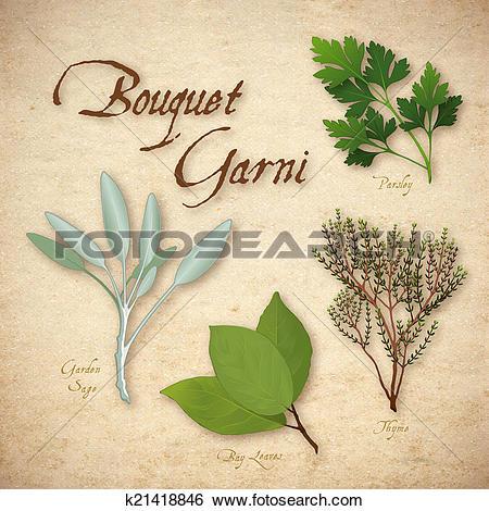 Stock Illustration of Bouquet Garni, French Herb Blend k21418846.