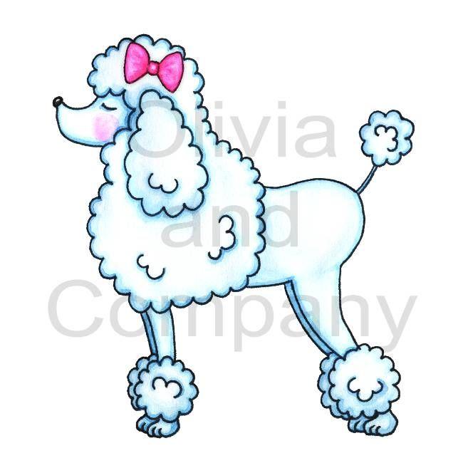 pink poodle drawing.