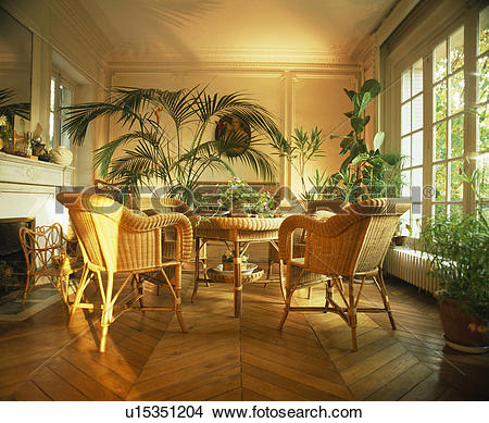 Stock Photo of Cane chairs and lush green houseplants in French.