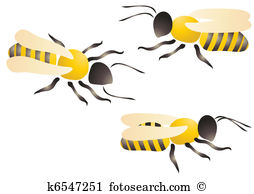Wasps Illustrations and Clip Art. 557 wasps royalty free.