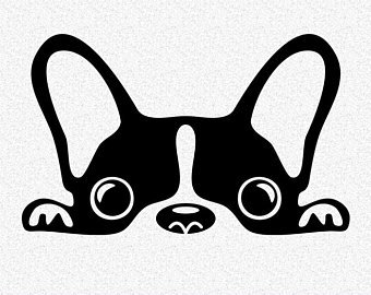 Frenchie clipart 3 » Clipart Portal.