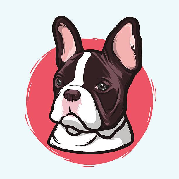 Best French Bulldog Illustrations, Royalty.