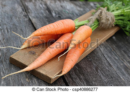 Picture of fresh crop of carrots tie beam on wooden table.