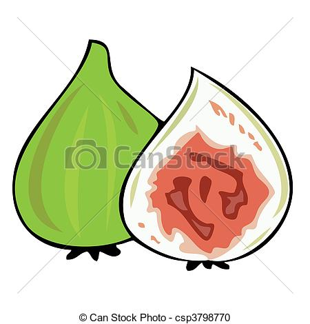 Vector Clipart of Fresh figs. csp3798770.