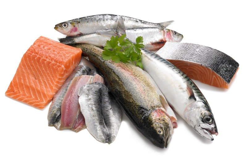 Fresh Fish Png.