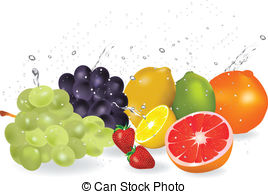 Fresh fruit clipart.