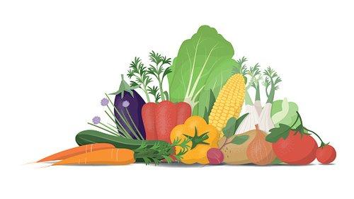 Fresh Vegetables premium clipart.