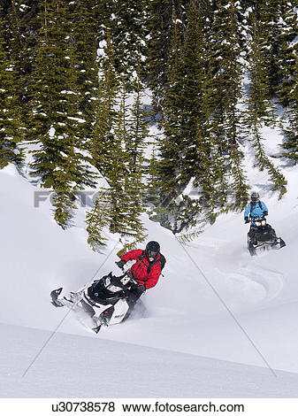 Pictures of Two snowmobilers carve fresh tracks on a beautiful.