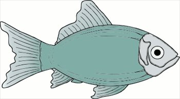 Freshwater fish clipart #17