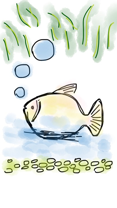 Freshwater.