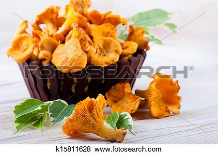 Pictures of Chanterelle mushrooms in a basket with forest leaves.