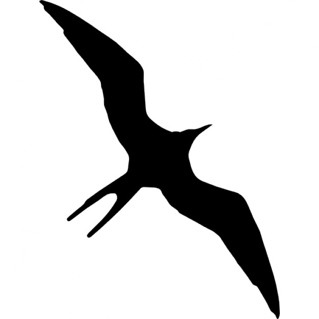 Frigatebird bird animal shape Icons.