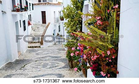 Picture of Town of Frigiliana, MBlaga, Andalusia, Spain s73.