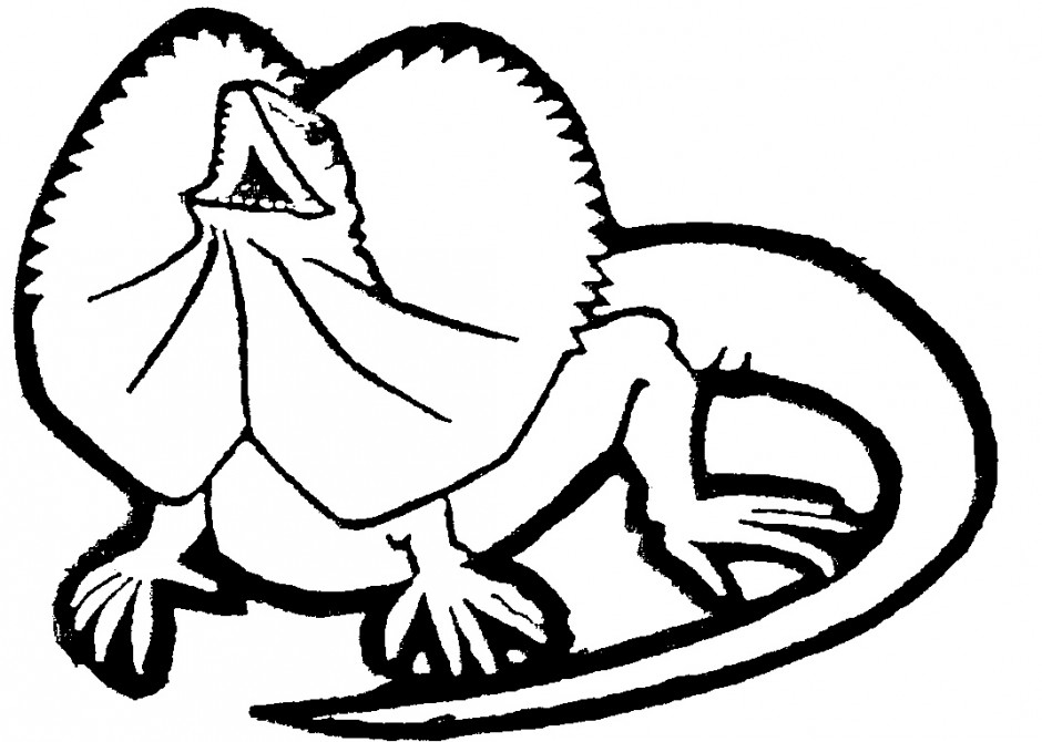 Cartoon Lizard Images.