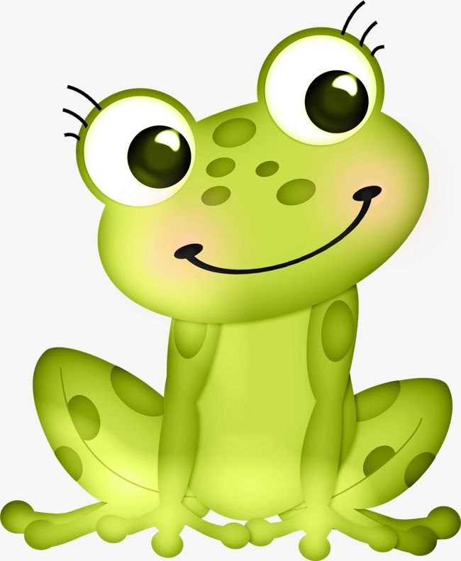 Cute Frog, Frog Clipart, Cute Clipart, Frog PNG Transparent Image.