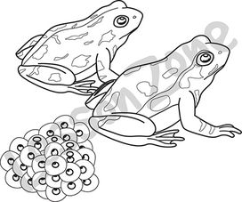 Frog Eggs Clipart.