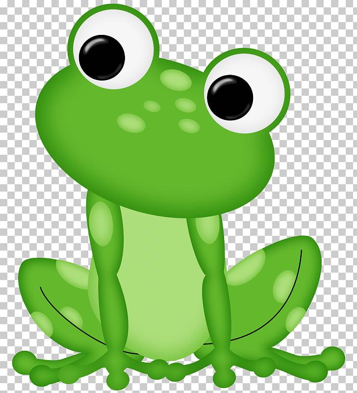Frog , Rana PNG clipart.