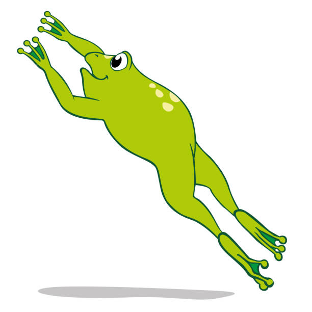 Best Jumping Frog Illustrations, Royalty.