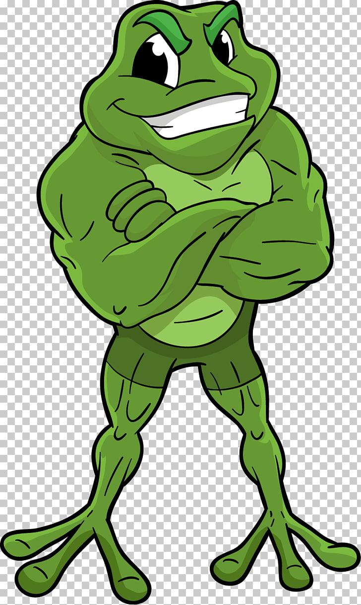 American bullfrog Gigging Frog legs , Strong Frog s PNG.