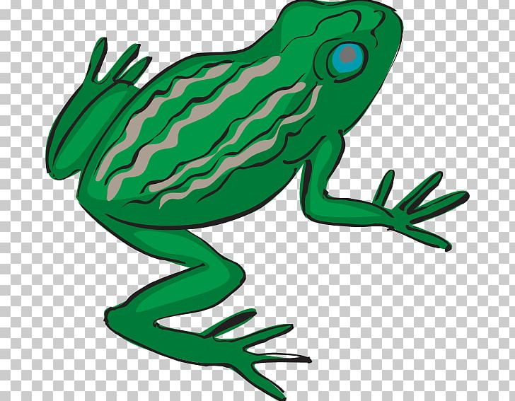 Frog Legs Drawing PNG, Clipart, Amphibian, Art, Artwork.