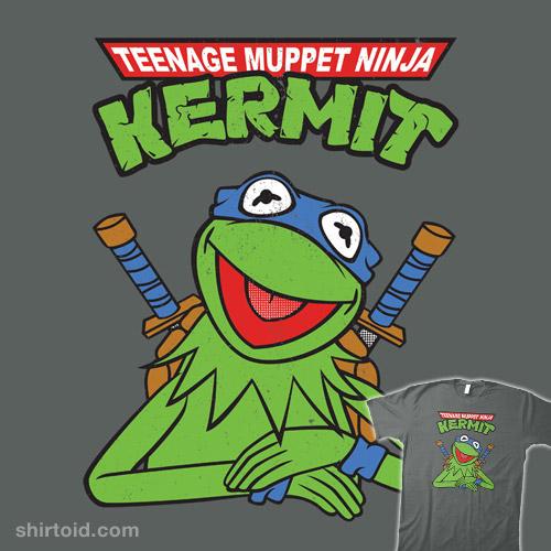 Teenage Muppet Ninja Kermit.