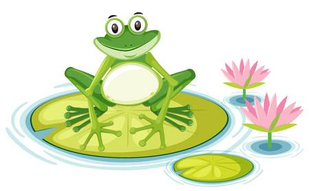 187 Frog On Lily Pad Stock Vector Illustration And Royalty Free Frog.