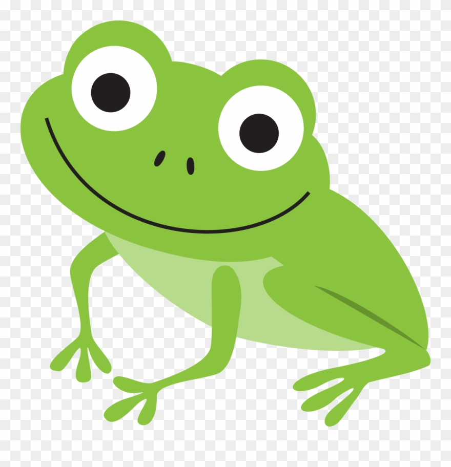 B *✿* Frog Illustration, Pond Life, Green Frog, Frogs.