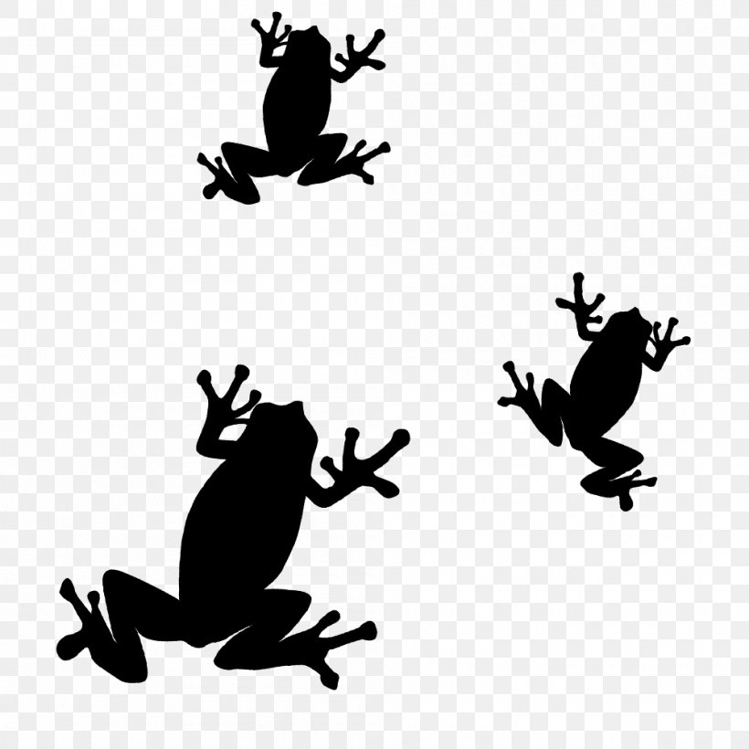 Toad Frog Silhouette Clip Art, PNG, 1000x1000px, Toad.