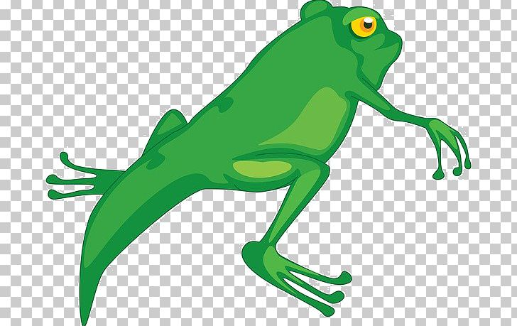 Frog Tadpole Cartoon PNG, Clipart, Animals, Artwork, Balloon Cartoon.