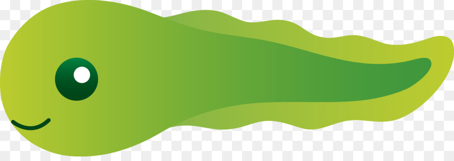 Green Grass Background png download.