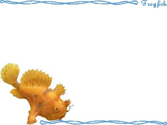 Frogfish clipart graphics (Free clip art.