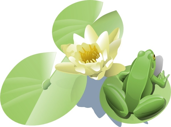Leland Mcinnes Frog On A Lily Pad clip art Free vector in.