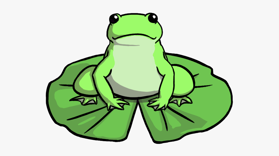 Frog On Lily Pad Drawing , Transparent Cartoon, Free.