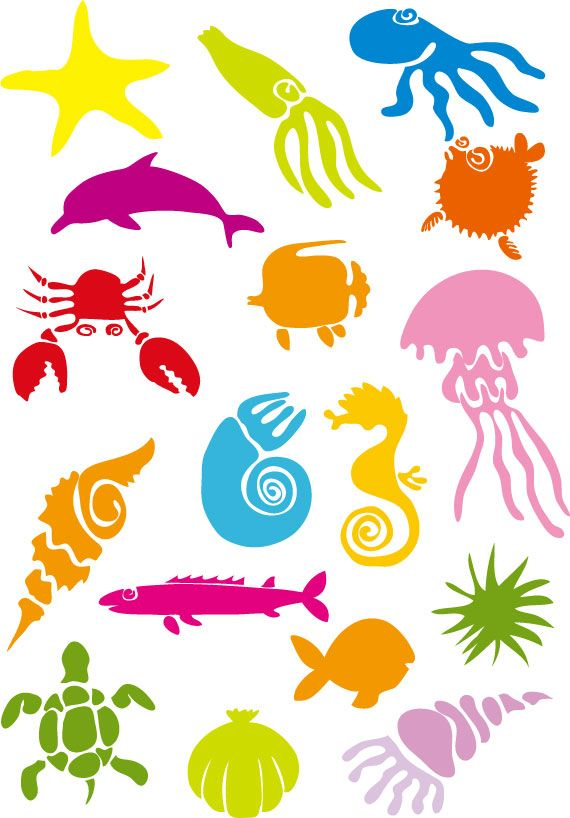1000+ images about FAVE SEA LIFE on Pinterest.