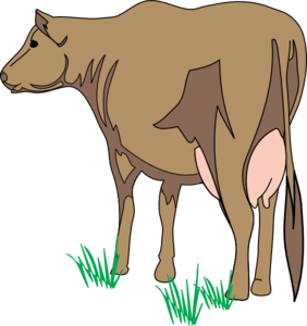 Brown Cow Rear View Clip Art at Clker.com.