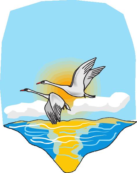 Sea Clipart.