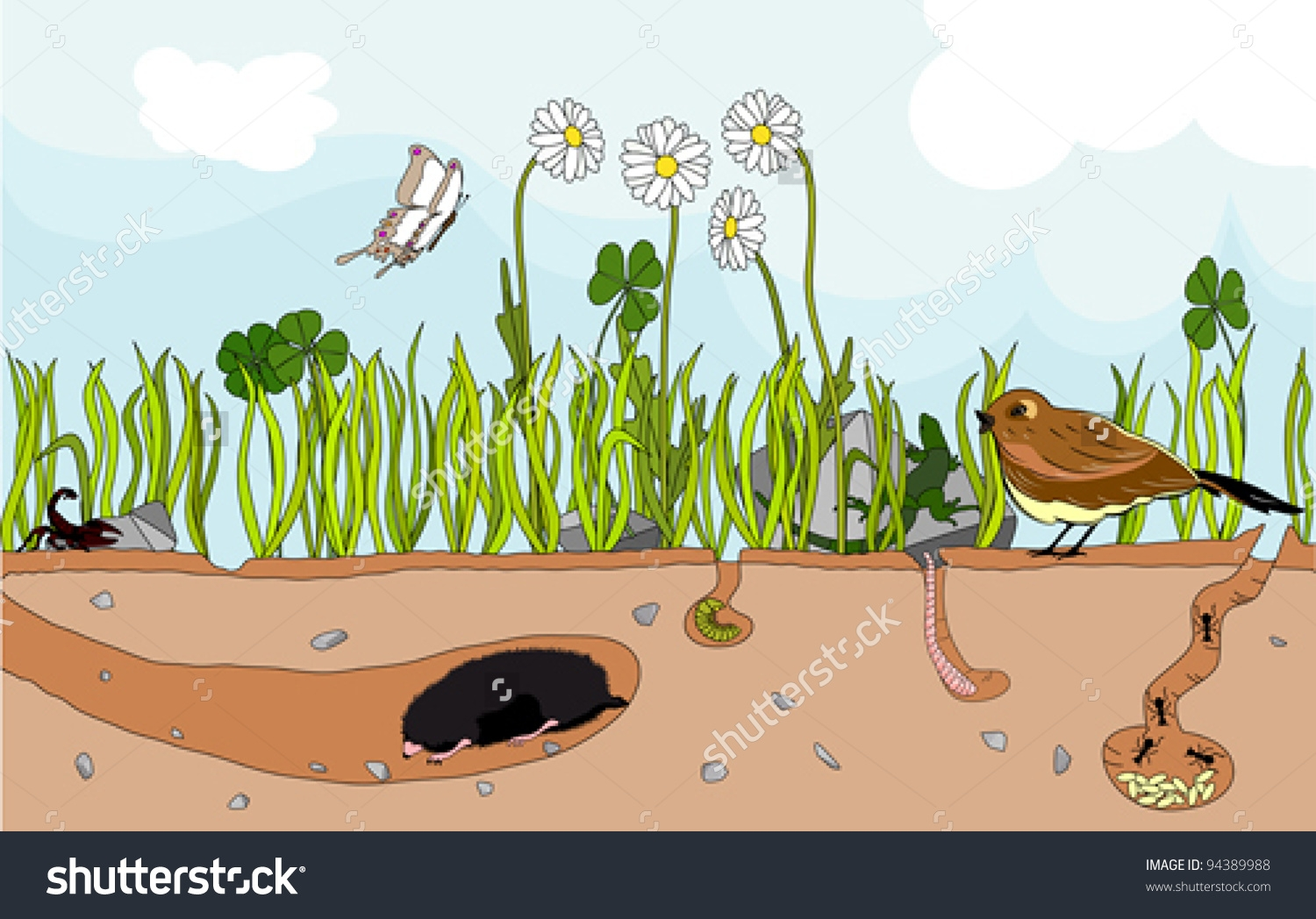 Underground animals clipart.