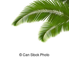 Frond Illustrations and Clip Art. 4,974 Frond royalty free.