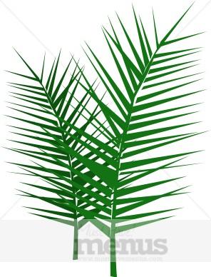 Palm fronds clipart #5